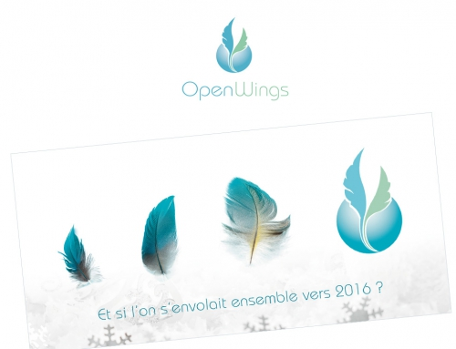 OpenWings Conseil